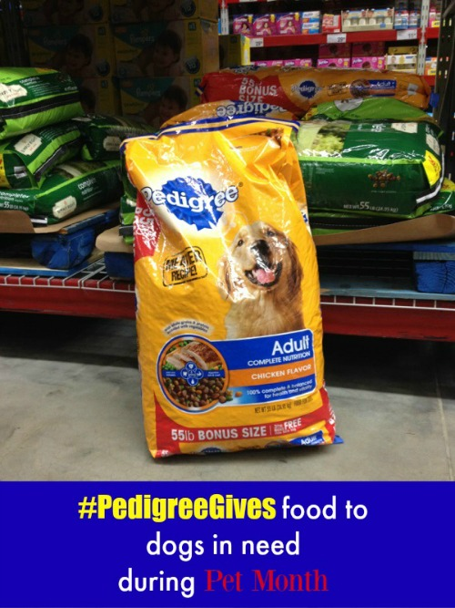 PEDIGREE gives food to needy dogs on Helicopter Mom and Just Plane Dad #PedigreeGives #ad